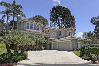 Del Mar Single Family Home For Sale: 1133 Los Caballitos