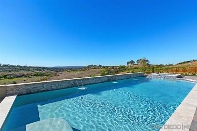 Alpine, Carmel Valley, Del Mar, Encinitas, Escondido, Rancho Santa Fe, San Diego Single Family Home For Sale: 7620 Northern Lights