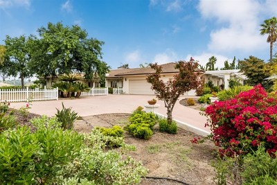 Escondido Single Family Home For Sale: 2336 Nabal St