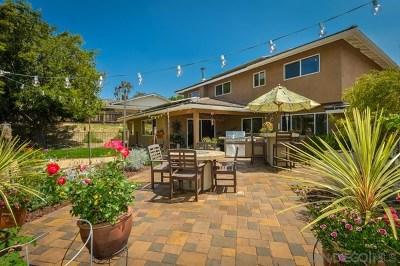 Bonita Single Family Home For Sale: 3920 Rock River Ln