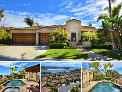 Carlsbad Single Family Home For Sale: 1335 Alcyon Ct