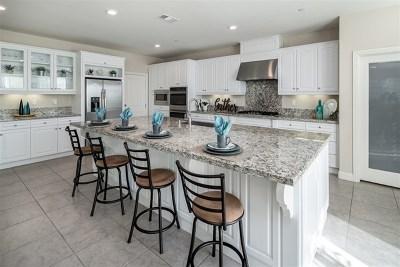 Escondido Single Family Home For Sale: 2045 Campo Verde Ct