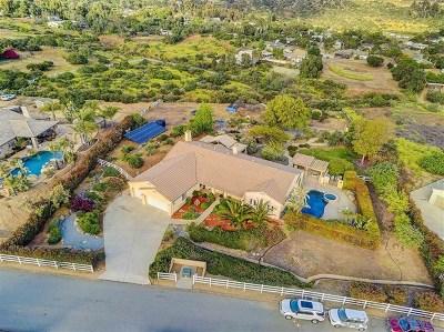 El Cajon Single Family Home For Sale: 10053 Silva Rd