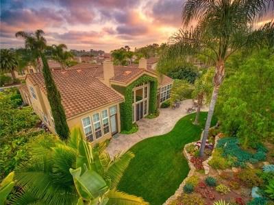Carlsbad Single Family Home For Sale: 1324 Shorebird Ln