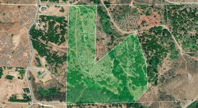 Fallbrook Residential Lots & Land For Sale: Via Del Rio (Lot-86)