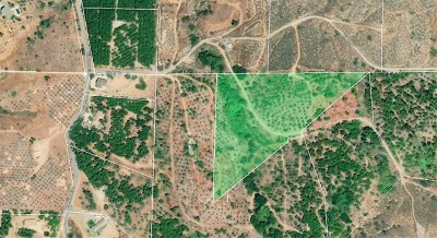 Fallbrook Residential Lots & Land For Sale: Via Del Rio (Lot-87)