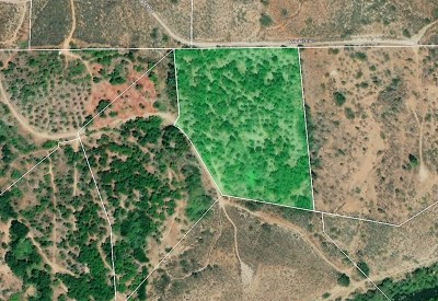 Fallbrook Residential Lots & Land For Sale: Via Del Rio (Lot-88)