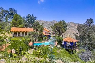 El Cajon Single Family Home For Sale: 602 Singing Vista Court