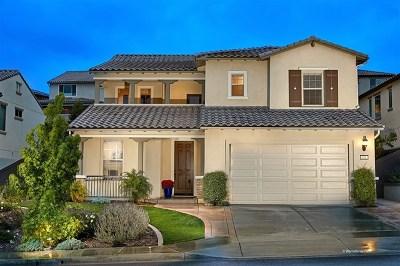 Vista Single Family Home For Sale: 521 Adobe Estates Dr