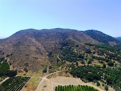 Fallbrook Residential Lots & Land For Sale: Pala Rd