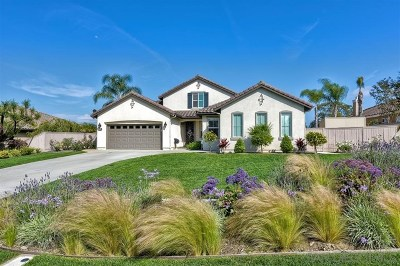 San Marcos Single Family Home For Sale: 754 Banyan Ct