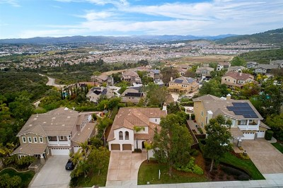 San Marcos Single Family Home For Sale: 1155 Via Vera Cruz