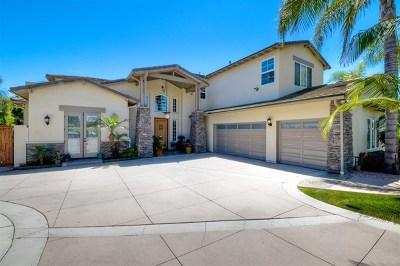 Encinitas Single Family Home For Sale: 843 Requeza St