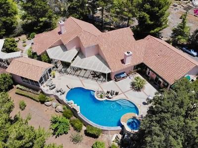 Alpine Single Family Home For Sale: 2111 John Dewitt Place