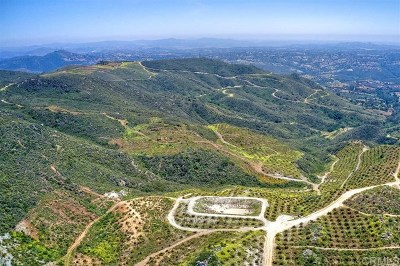 Temecula Residential Lots & Land For Sale: Calle Uva