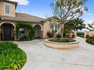 Fallbrook Single Family Home For Sale: 433 Lemmonwood