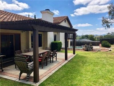 Escondido Single Family Home For Sale: 1673 Citrus Hills Ln