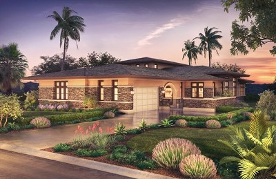 Encinitas Single Family Home For Sale: 3817 Rancho Summit