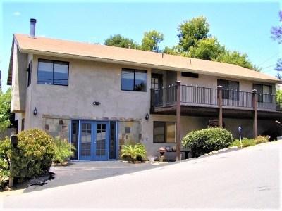 Fallbrook Single Family Home For Sale: 432 E Dougherty