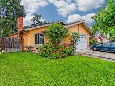 Mission Viejo Single Family Home For Sale: 22542 Via Santa Maria