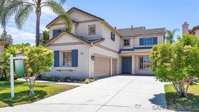 San Marcos Single Family Home For Sale: 423 Landmark Court