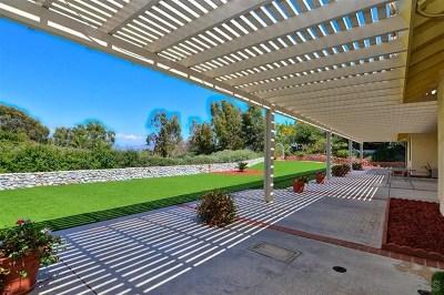 Escondido Single Family Home For Sale: 2313 Cortina Cir