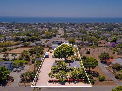 Encinitas Single Family Home For Sale: 920 Hymettus Ave