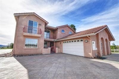 Temecula Single Family Home For Sale: 35200 Linda Rosea Rd