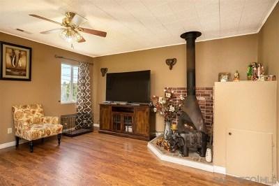 Lemon Grove Single Family Home For Sale: 2622 Grange St