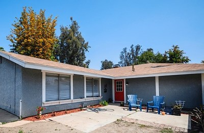 Lake Elsinore Single Family Home For Sale: 1113 Jefferson St.