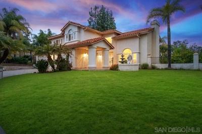 Escondido Single Family Home For Sale: 1110 Dexter Pl