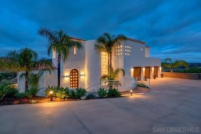 Escondido Single Family Home For Sale: 17 Stonepointe Dr