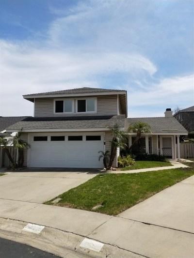 Vista Single Family Home For Sale: 984 Brighton Ct