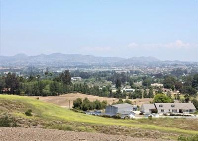 Murrieta Residential Lots & Land For Sale: 1112 Edna