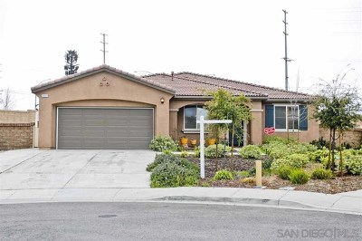 Menifee Single Family Home For Sale: 30023 Wales Court