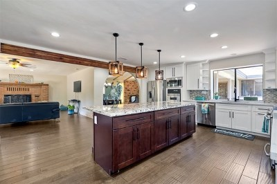 Vista Single Family Home For Sale: 1661 Foothill Dr