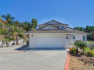 Escondido Single Family Home For Sale: 1783 Paradise St