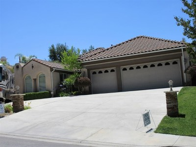 Temecula Single Family Home For Sale: 30097 Laurie Rae Ln