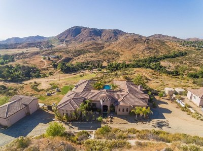 Wildomar Single Family Home For Sale: 24010 Oak Circle Dr