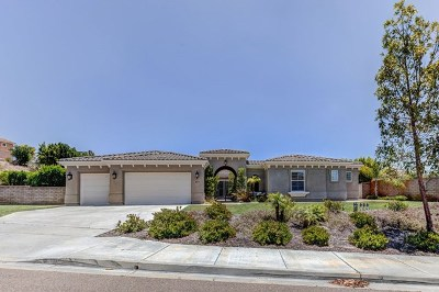 Chula Vista Single Family Home For Sale: 619 Via Maggiore