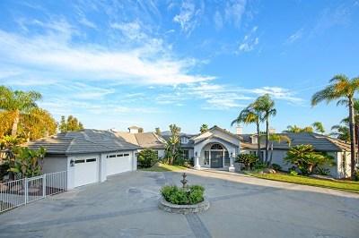 Alpine Single Family Home For Sale: 2133 Corte Dorado Espuela