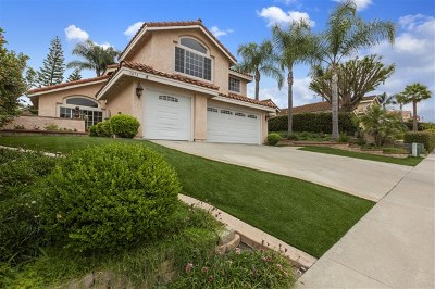 Vista Single Family Home For Sale: 1873 Paseo Del Lago