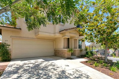 San Marcos Single Family Home For Sale: 633 Bush Ln
