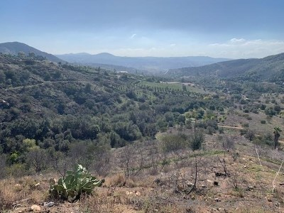 Valley Center CA Residential Lots & Land For Sale: $379,900
