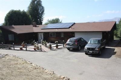 Alpine Single Family Home For Sale: 1828 Via Corina