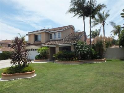 San Marcos Single Family Home For Sale: 817 Bel Esprit Cir