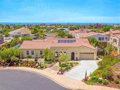 Encinitas Single Family Home For Sale: 932 Bluejack Rd