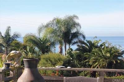 Del Mar Single Family Home For Sale: 1128 Cuchara