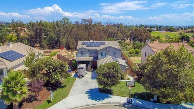 Fallbrook Single Family Home For Sale: 1562 Paulann Court