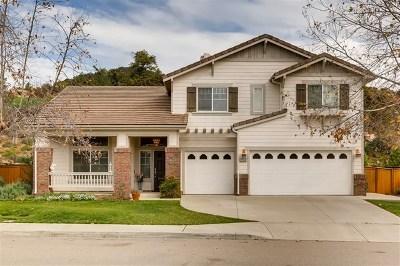 Escondido Single Family Home For Sale: 3244 Oak Wood Lane